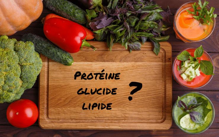 macronutriments: protéines glucides lipides