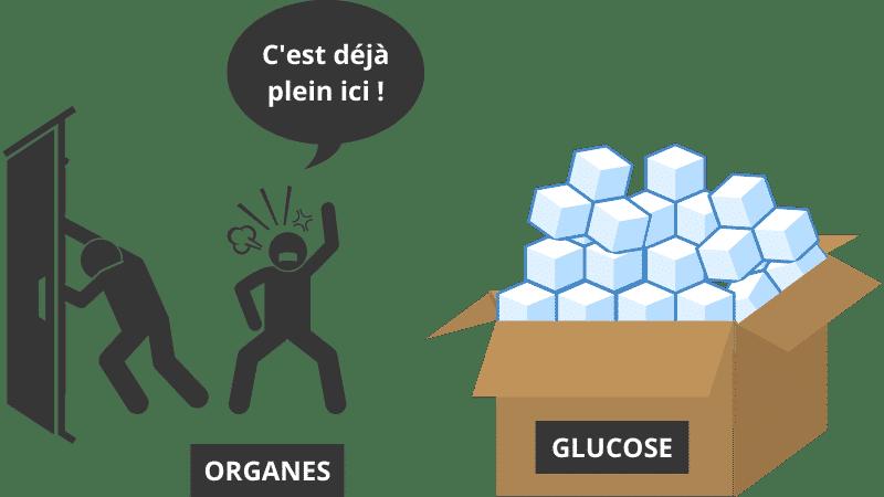 résistance à l'insuline - un trop plein
